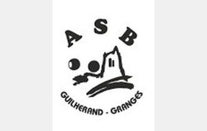 A l'ASB Guilherand- Granges Journée Sport Adapté - Boule Mousseuse Saint  Péray